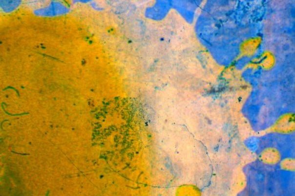 """A still from Jennifer West's """"Paintball Film"""". A round splotch of bright yellow paint over a deep sky blue, visible around the top and right-hand edges. The edges of the yellow splotch have splatter marks, and the blue has seeped through the yellow in some patches, creating a delicate, deep-green crackle-effect."""